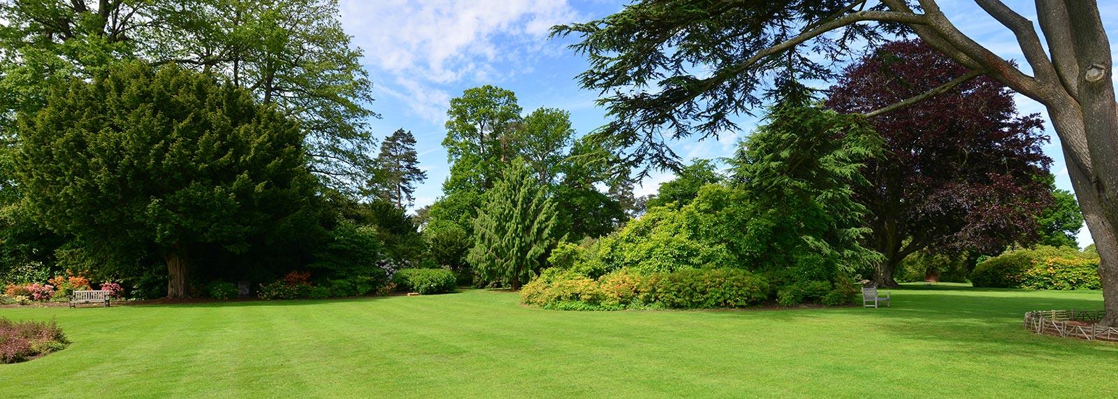 Giardini all 39 inglese dellavalle giardini for Esempi giardino