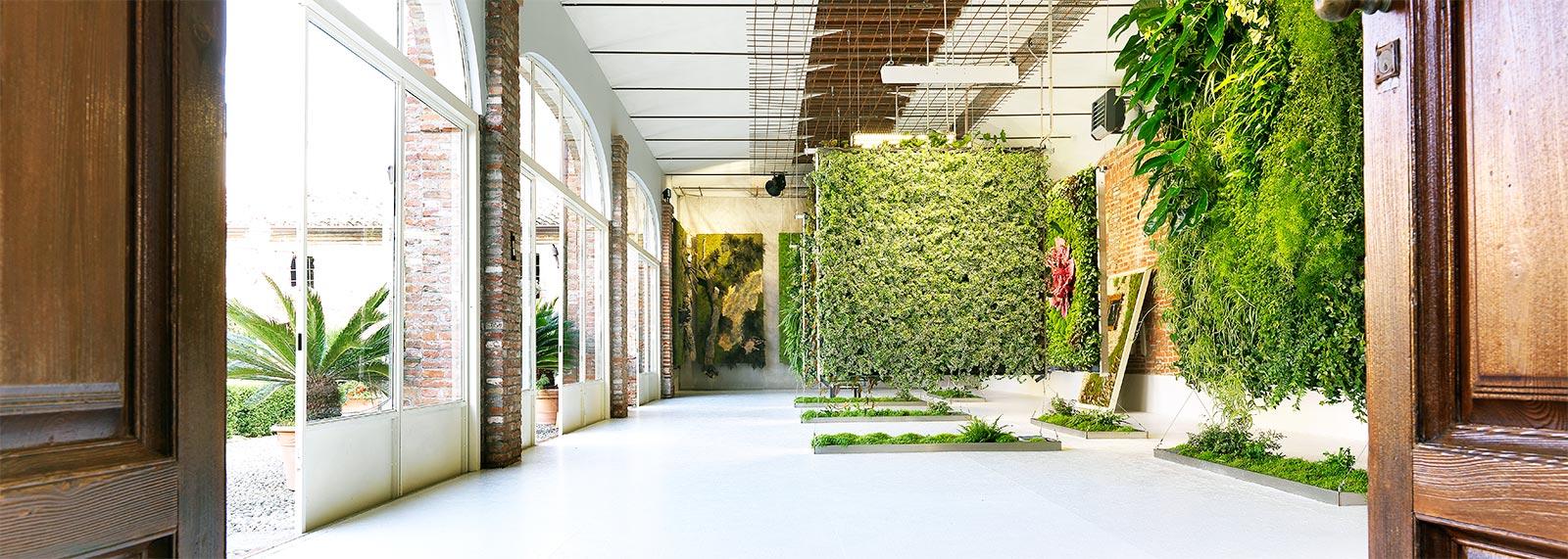 Pareti Verdi Interni.Realizzazione Giardini Verticali Pareti Verdi Verticali