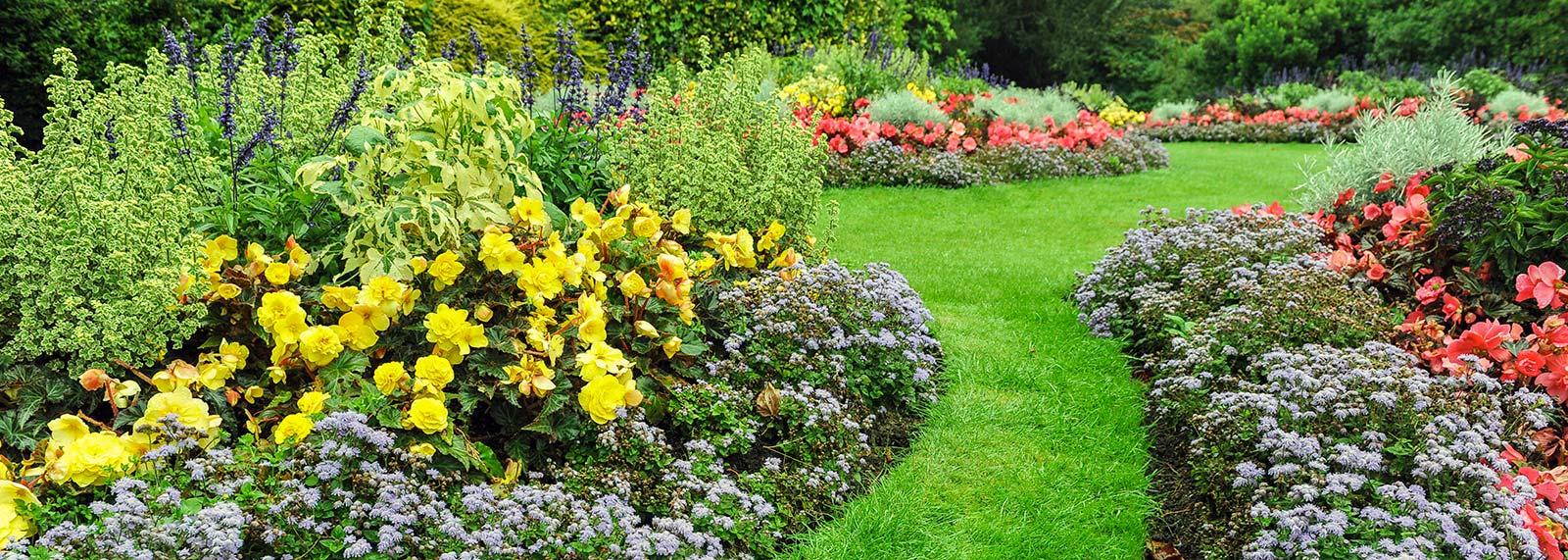 Giardini all 39 inglese dellavalle giardini for Alberelli per giardino