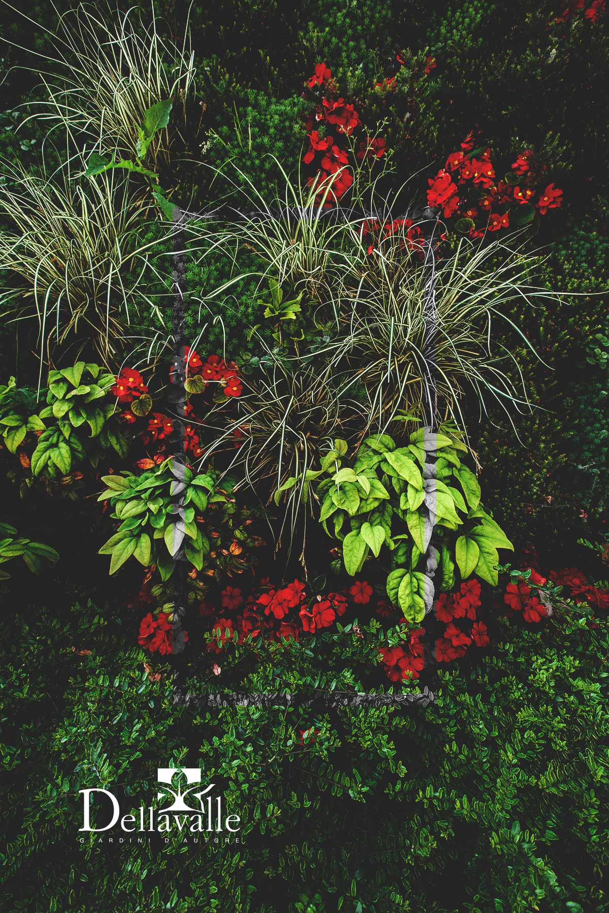 pareti vegetali