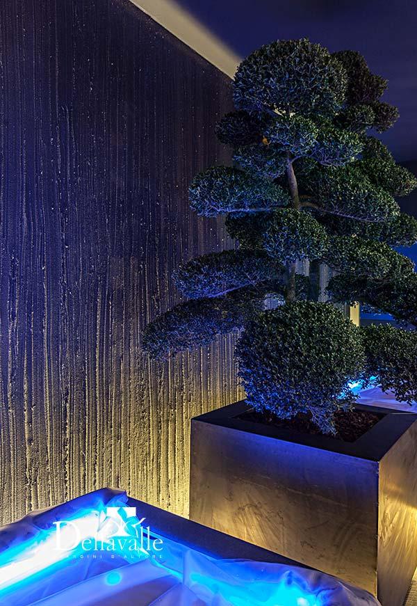 realizzazione giardini verticali